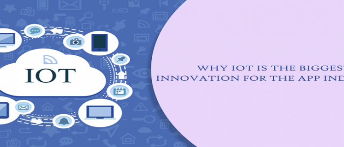 Top 8 Reasons Why IoT is the Biggest Innovation for the App Industry in 2019